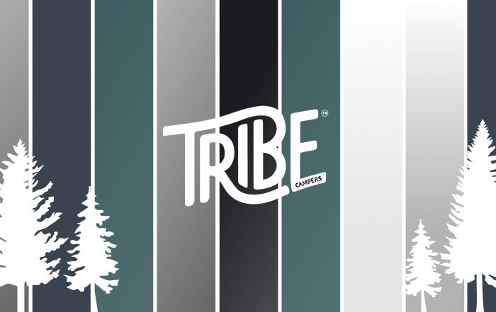 A selection of vehicle colours chosen as base vehicles by Tribe Campers customers, for their camper van conversions.